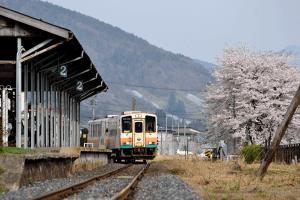 宮内駅の桜