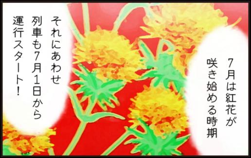 日本の紅(あか)をつくる町3