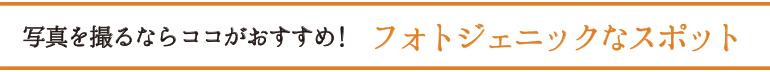 musubi_ttl02