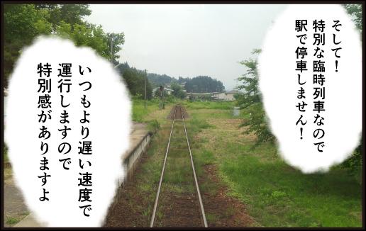 Flower concert3